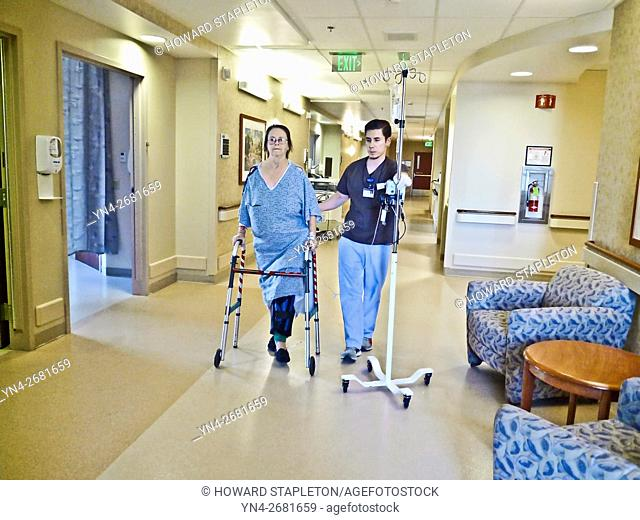 A hospital patient takes her first hallway walk assisted by a physical therapist just 5-hours following a knee replacement surgery