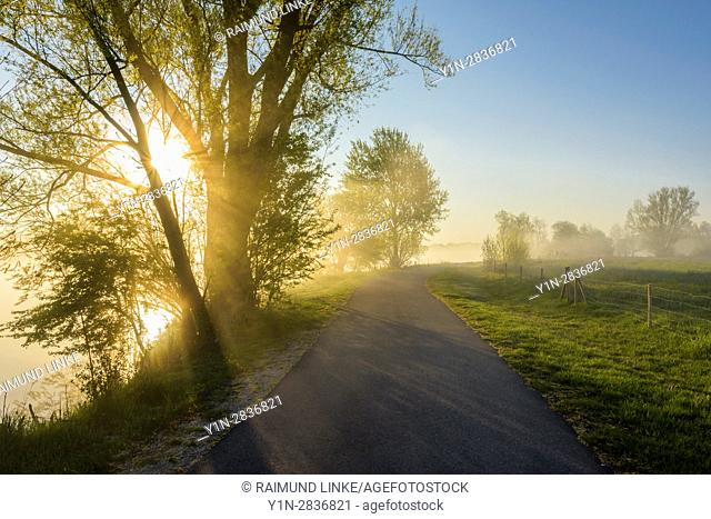 Lakeside way with sunbeams and morning mist, Streudorf, Lake Altmuhlsee, Weissenburg-Gunzenhausen, Bavaria, Germany
