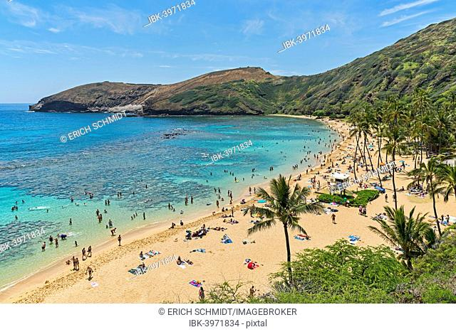 Beach, Hanauma Bay, Oahu, Hawaii, United States