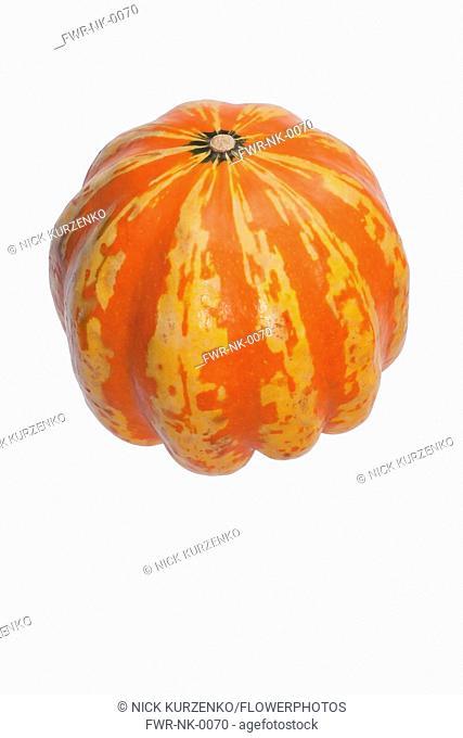 Squash, Carnival squash, Cucurbita pepo 'Carnival', Studio shot of single orange coloured fruit against white background