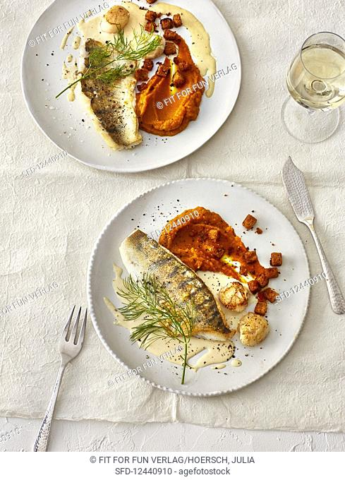 Zander fillets and scallops with pumpkin puree (Christmas)