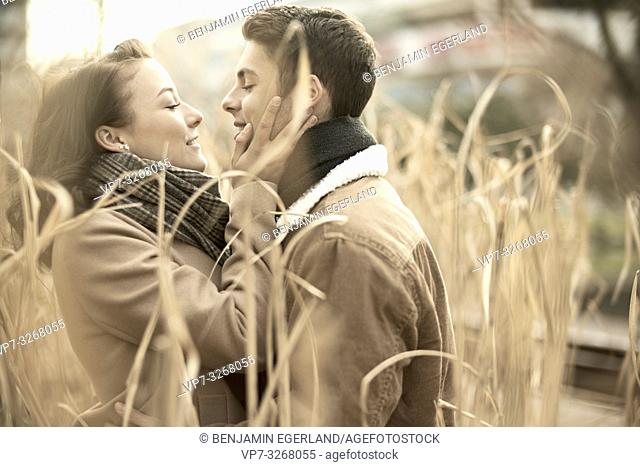 enamoured teenage couple in reed, nature, in Cottbus, Brandenburg, Germany