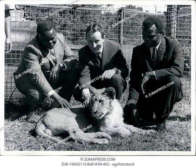 1968 - Lion Cub presented to Mr. & Mrs. Raymond C. Firestone by Kenya Government; Photo Shows at Nairobi animal Orphanage today when a n8 month old lion was...