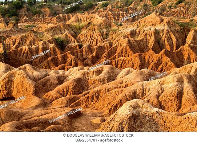 Tatacoa Desert in Colombia, South America
