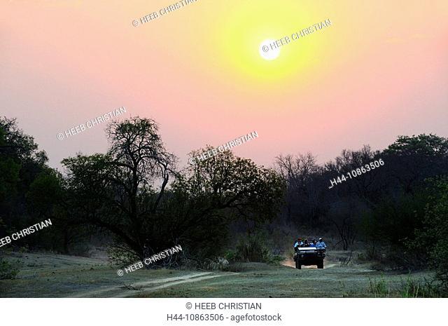 Game DriveUlusaba Sir Richard Branson's Private Game Reserve, Sabi Sands Game Reserve, Mpumalanga, South Africa, dirt road, dusk, twilight, tourism, tourists
