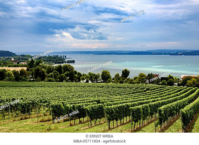 View at Lake of Constance, Überlinger lake with Maurach/Birnau, Baden-Wurttemberg, Germany