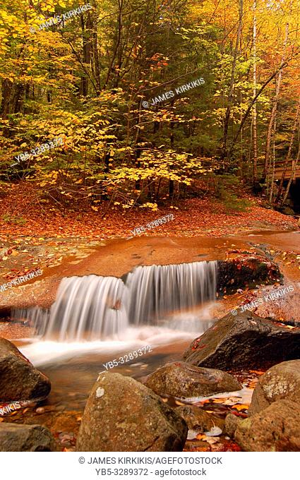 A waterfall surrounded by fall foliage
