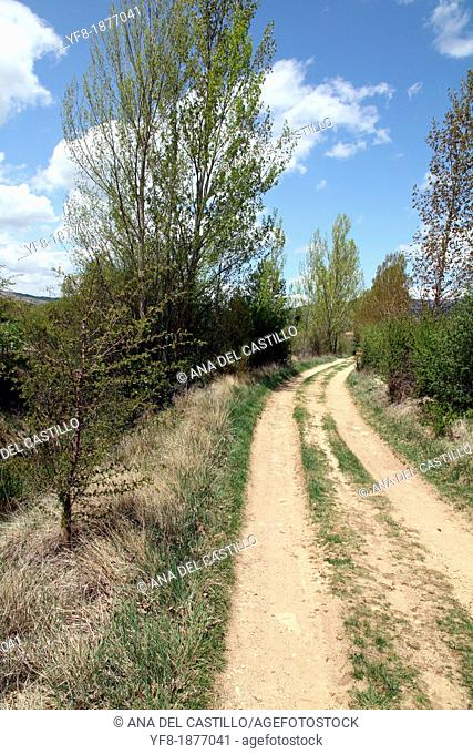 Path, Gudar mountains, Teruel, Aragon, Spain