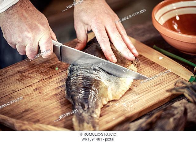 Unrecognizable person cutting pike fish
