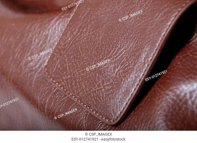 Luxury Hand Bag / Purse