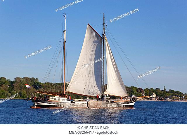 Sailing ship in the Kiel Fjord, Kiel, Schleswig - Holstein, North Germany, Germany