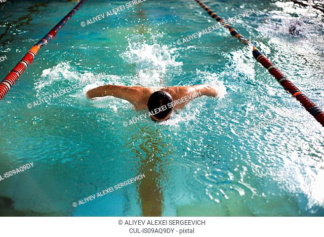 Male swimmer doing butterfly stroke in swimming pool