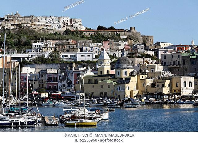 Harbour with a view of Terra Murata, Porto di Marina Grande, Island of Procida, Gulf of Naples, Campania, Southern Italy, Italy, Europe