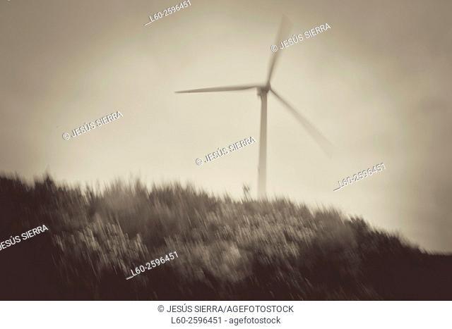 Wind turbines, Galicia, Spain