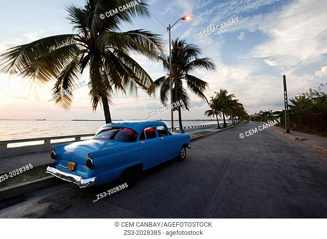 Blue american vintage car with palm trees at the Malecon, Cienfuegos, Cuba, Americas