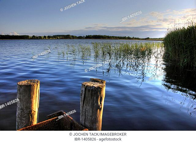 Selliner See lake in Sellin, Ruegen island, Mecklenburg-Western Pomerania, Germany, Europe