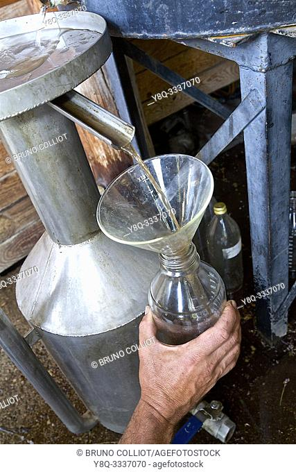 Solaure, old-fashioned distillation for this simple producer. Calling Producer Simple official status. Here is Etienne Fournier, a simple producer