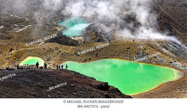 Green sulphurous lakes, Emerald Lakes in active volcanic Tongariro National Park, Manawatu-Wanganui, North Island, New Zealand