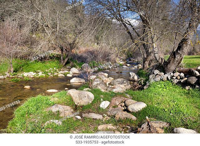 Cereceda stream in La Iglesuela. Toledo. Castilla la Mancha. Spain