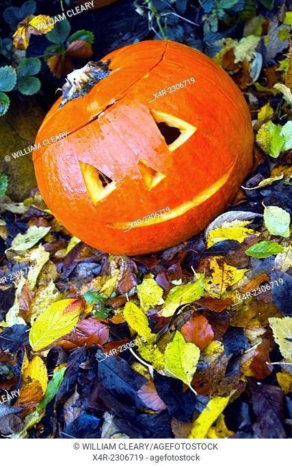 Festively carved pumpkin