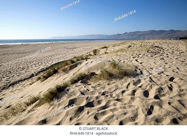 Dunes and beach, Pismo Beach, San Luis Obispo County, California, United States of America, North America