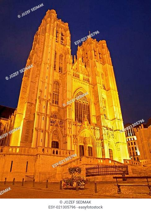 Brussels - Saint Michael and Saint Gudula gothic cathedral - west facade at night