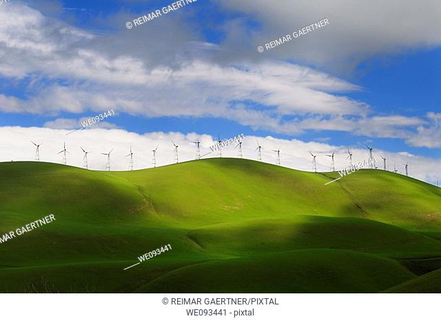 Winter sun on the rolling green hills of the Altamont Pass wind farm in California