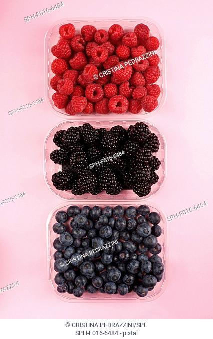 Fresh berries, studio shot