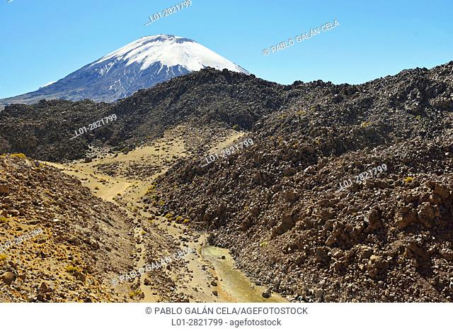 Parinacota volcano in the background. Foreground, lava flows and basalt rocks. Lauca National Park. Norte Grande region. Chile