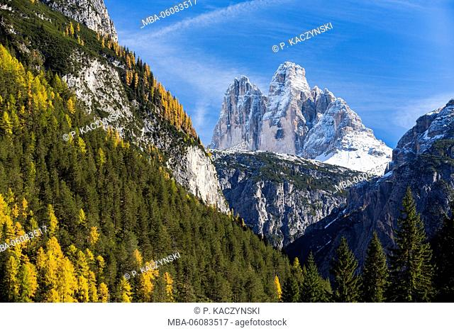 Drei Zinnen (2998 m) and trees on mountain slopes, autum, UNESCO World Heritage Site, Dolomites, Veneto, Belluno Province, Italy
