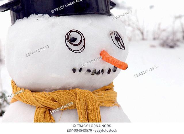 snowman frost