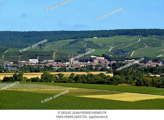 France, Marne, Ay, Marne Valley, panorama on the vineyards of champagne ranked Grand cru and listed as World Heritage by UNESCO seen since Epernay
