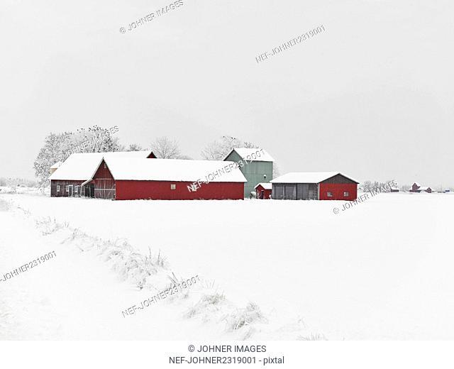 Farm buildings at winter