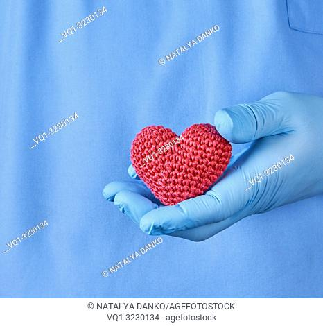 doctor with blue latex gloves holding a red heart, close up