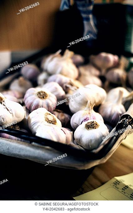 Garlic. Kuzina. The greedy street. Bordeaux. Gironde. Aquitaine. France. Europe