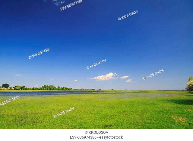 the river emerged from its banks and the green field on a spring day