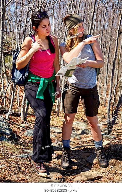 Two female hikers looking at map and pointing in forest, Harriman State Park, New York State, USA