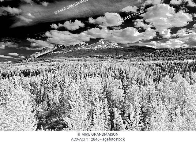 Clouds and Forest, Stewart Cassiar Highway, Good Hope, British Columbia, Canada