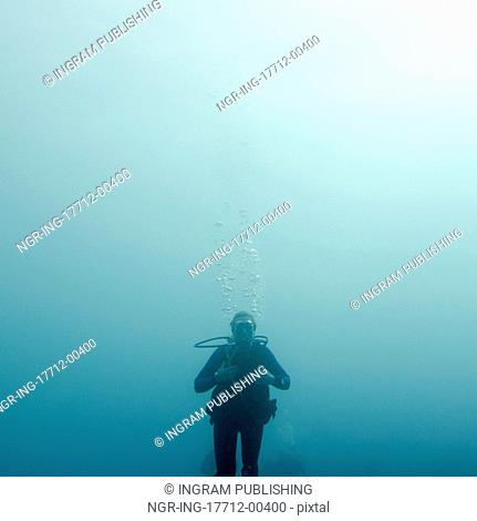 Scuba diver underwater, Utila, Bay Islands, Honduras