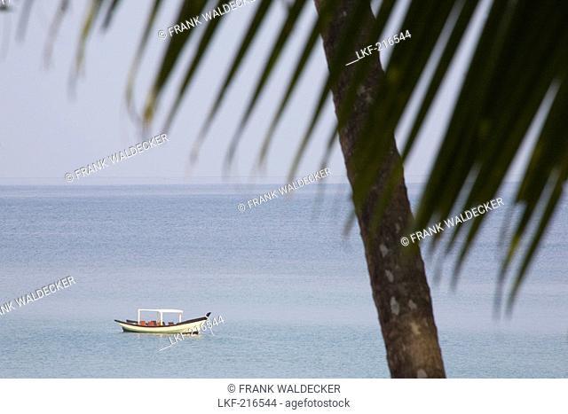 Fisher boat and palm leaf in Ngapali Beach, Gulf of Bengal, Rakhine State, Myanmar, Burma