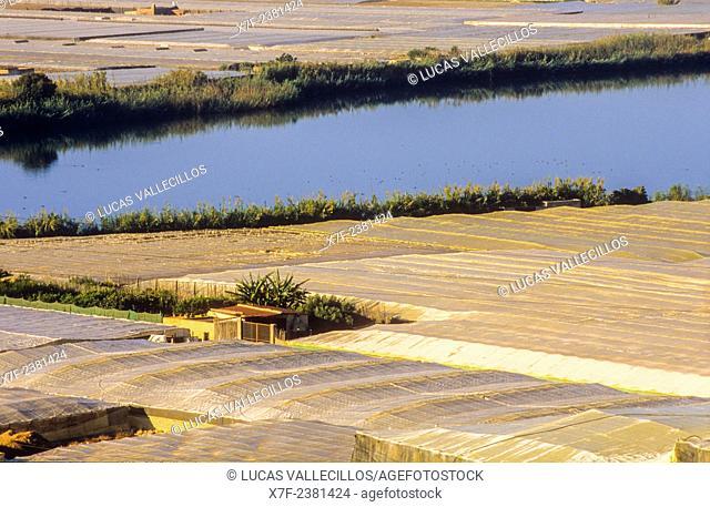 Albufera de Adra, Adra. Almeria province, Andalucia, Spain