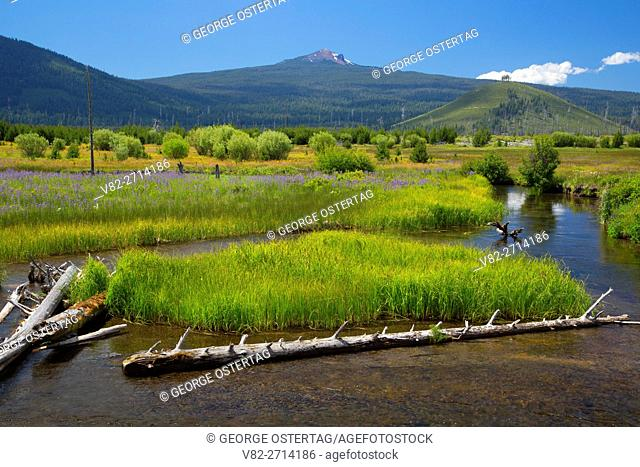 Odell Creek with Maiden Peak, Cascade Lakes National Scenic Byway, Deschutes National Forest, Oregon