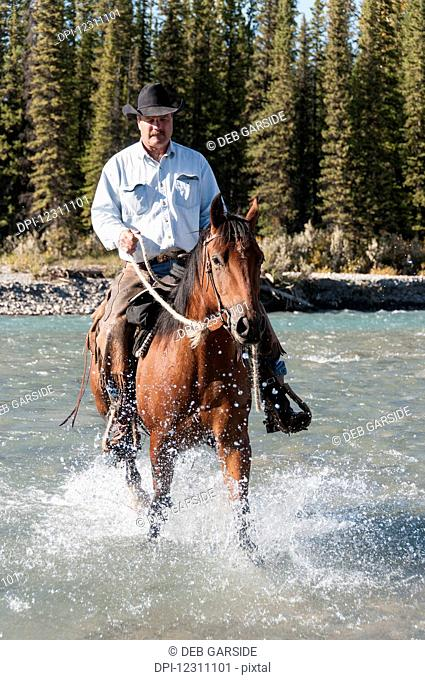 Cowboy and horse crossing river, Clearwater county; Alberta, Canada