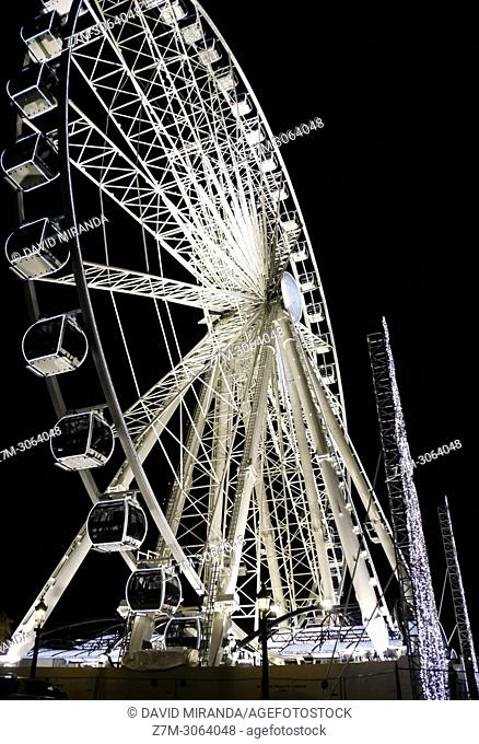 Ferris Wheel. Paris, France