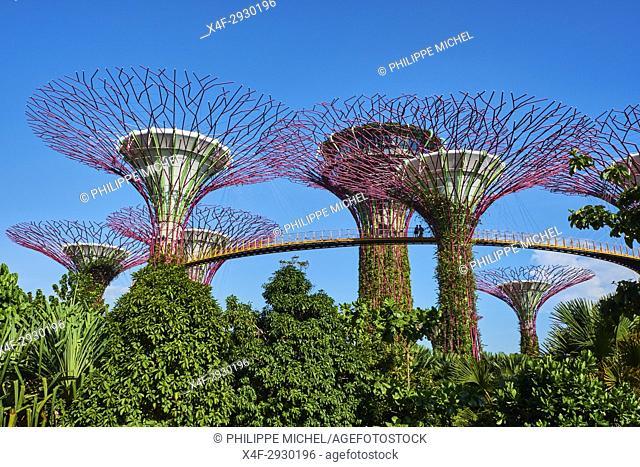 Singapore, Marina Bay, Garden By the bay, botanic garden, Supertree Grove