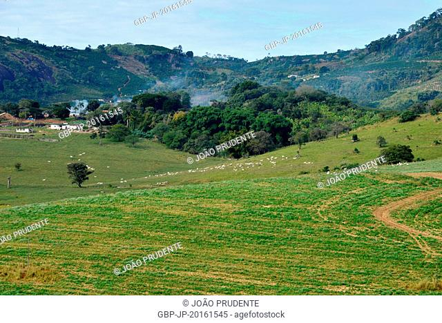 Panoramic view of farm in the region of Pedra Grande in the Countryside, Campestre, Minas Gerais, Brazil, 06.2015