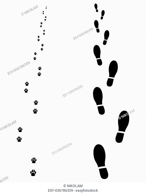 Footprints of man and dog, vector illustration