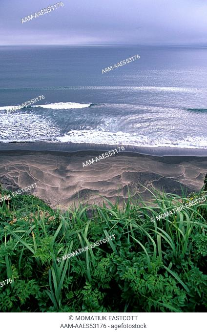 High Tide Marks on Beach, Bering Sea, St. George Island, Pribilofs, AK