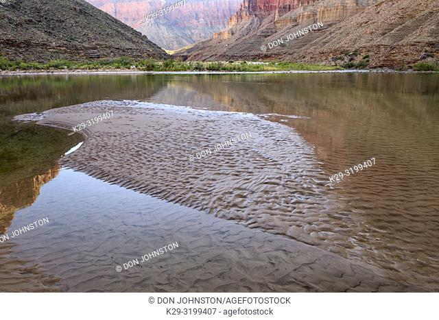 Exposed mud near the confluence of the Little Colorado and the Colorado Rivers, Grand Canyon National Park, Arizona, USA
