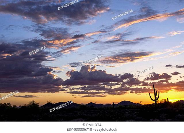 Another day comes to an end in the sonoran desert of Arizona; the calming rays of the evening sun